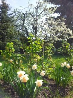 Spring (c) Dr. Eike Hoffmann